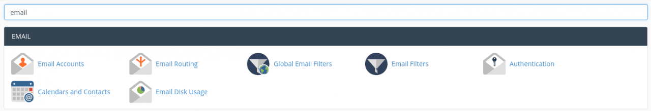 cPanel search for Email